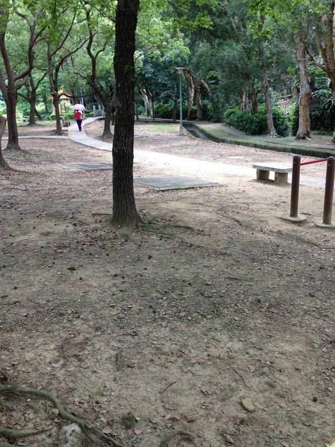 我們的公園 Park I 臺灣公園現況20