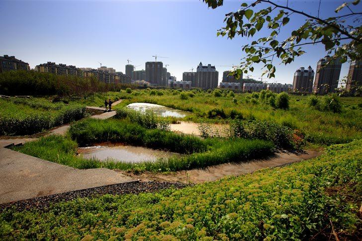 我們的公園Park II :永續生態公園的願景02