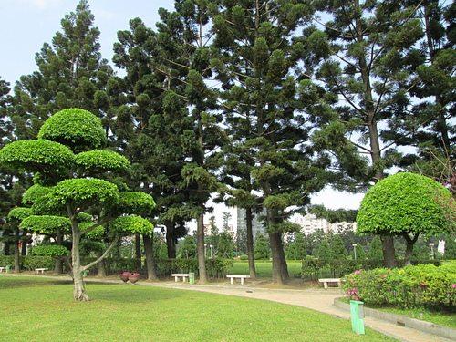 我們的公園Park II :永續生態公園的願景13