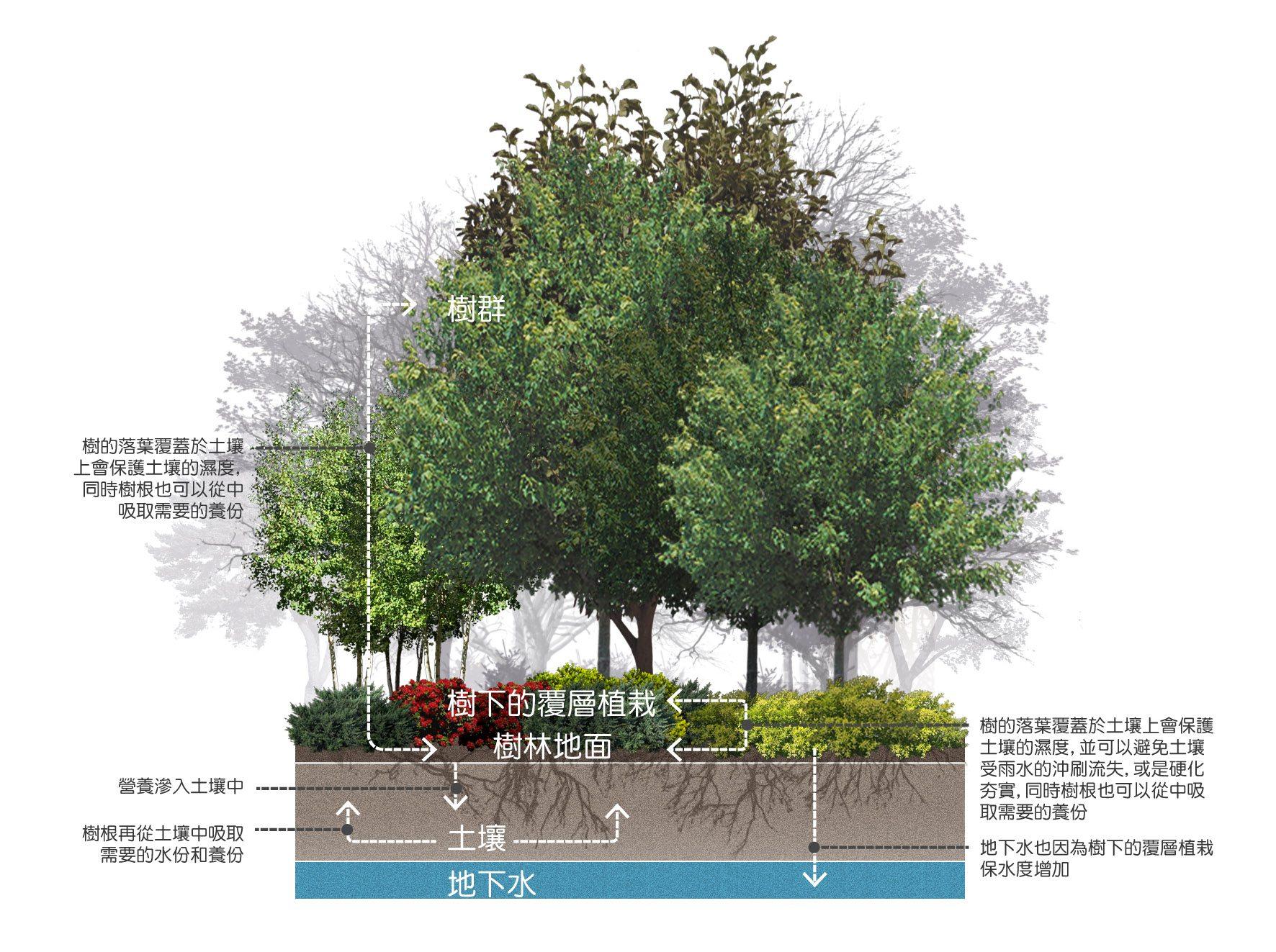 我們的公園Park II :永續生態公園的願景20
