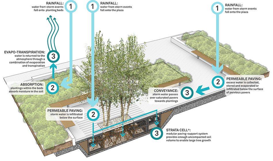 我們的公園Park II :永續生態公園的願景26
