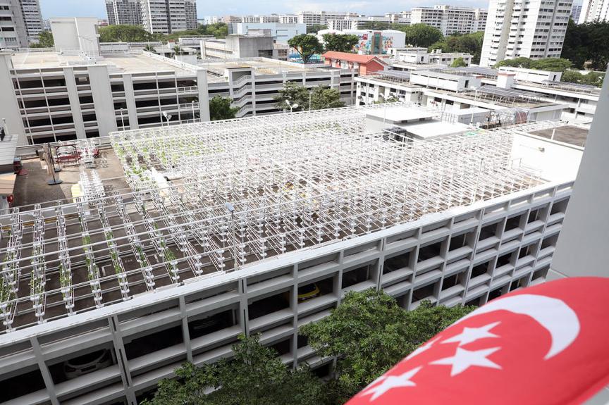 Citiponics的城市垂直農場位於Ang Mo Kio Avenue 6座700座多層停車場的屋頂上。更多此類屋頂農場將用於公開招標。